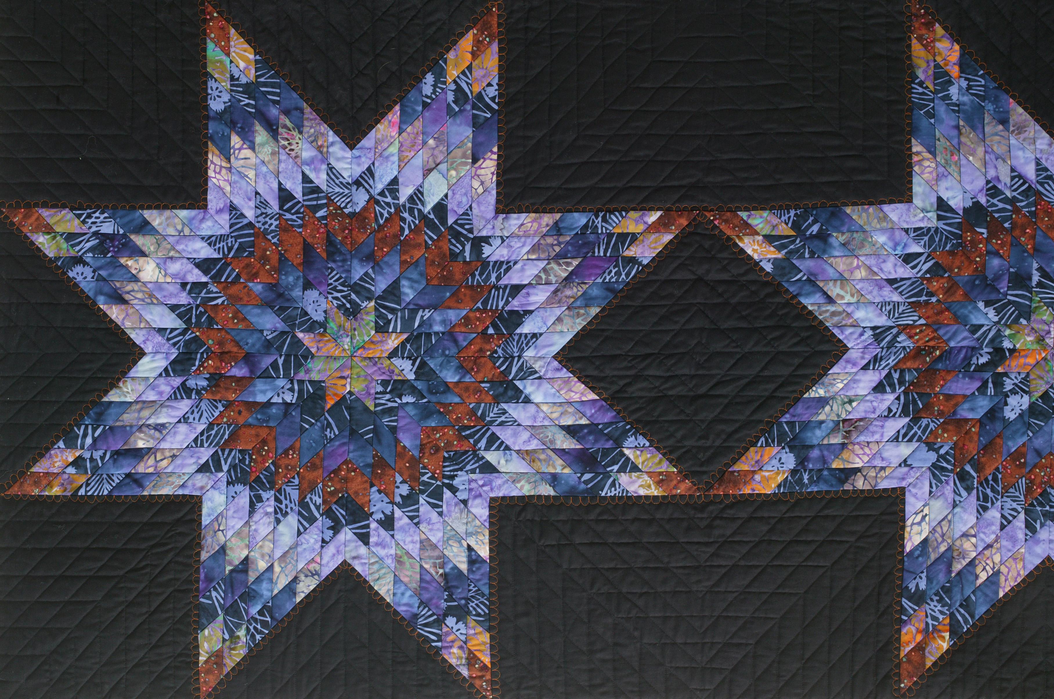 carolina stars detail L by joyce robinson